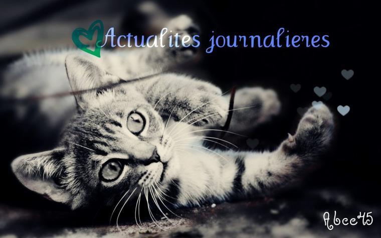 Actualités Journalières