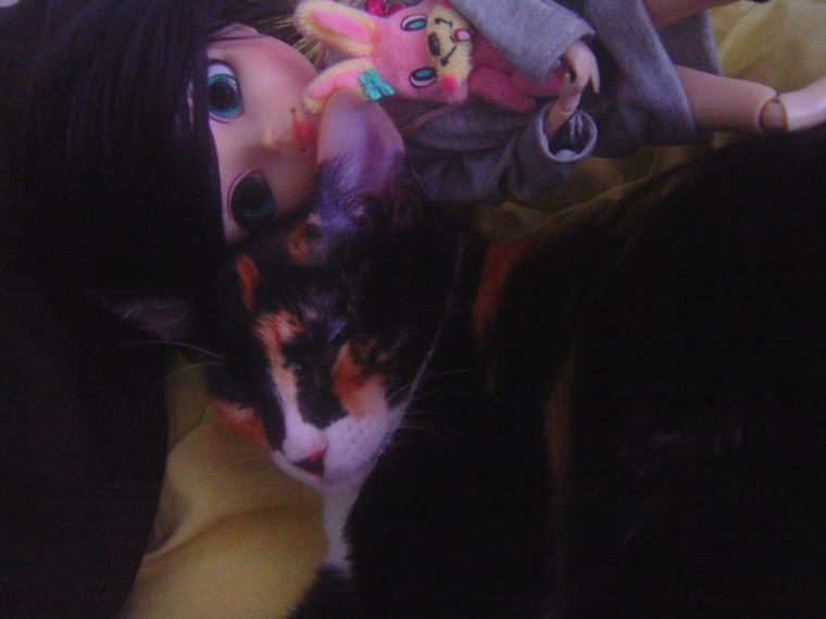 Séance photo avec Miku !!
