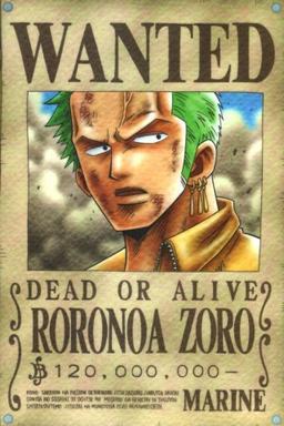 """""""Je deviendrai le meilleur sabreur du monde"""" Roronoa Zoro"""
