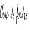 Coup de foudre CECI EST UN BROUILLON !!!! (2009)