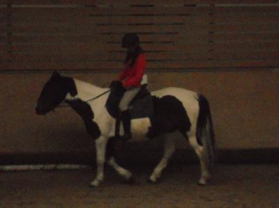 Monter un cheval vous donne un goût de liberté.