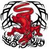 Dragon tribal 6