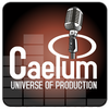 CAELUM PRODUCTION - UNIVERSE OF SOUND / JOYEUX ANNIVERSAIRE 2010