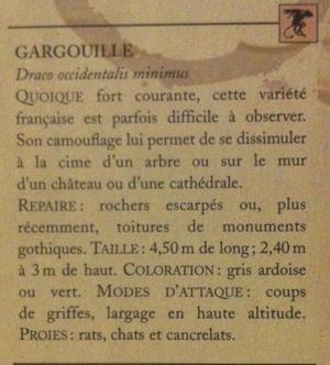 Dragonologie par Aqualia - Leçon I