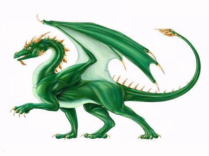 Les dragons 2 !