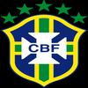 Équipe du Brésil de football à la Coupe du monde 2010