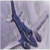 FORMATION DE PILOTE:   PILOTE PROFESSIONNEL