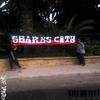 Sharks City