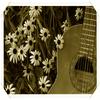 Beginning-guitar présentation !!