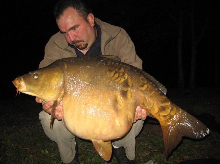 17.5kg