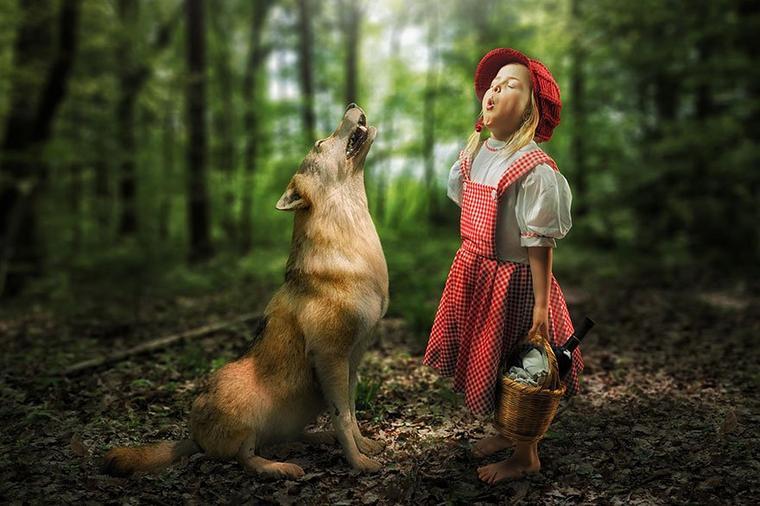 La Fabrique de l'Histoire : l'Homme et l'animal................