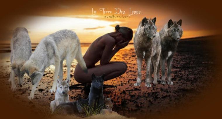 La dispersion de Canis lupus lupus sur le territoire national dénonce la conformité des discours écologiques et de leurs opposants tout en faisant ressortir l'incapacité des modèles de pensée, mis en place depuis vingt ans, à se régénérer.  Les écologues et leurs organisations, se considérant trop souvent comme les propriétaires des réalités naturelles; alors que les éleveurs et leurs organisations, défenseurs de « l'hyper-ruralité », parfois, se considèrent comme des propriétaires d'espaces ou l'ensauvagement est en train de reprendre pied.  Toutes les conditions nécessaires s'étant progressivement mises en place sous l'action pourtant visible de l'homme.  Alors qu'il est souvent dit, par ces mêmes écologues, que la chute de la biodiversité actuelle sonnerait comme une évidence. Oubliant le plus souvent que la variabilité est un facteur d'adaptation du vivant, totalement indispensable à sa pérennisation ! Cette même variabilité orchestrant la vie de Canis lupus lupus au sein du groupe désignée sous le nom de « meute ». Soit : une organisation naturelle destinée à la survie.....