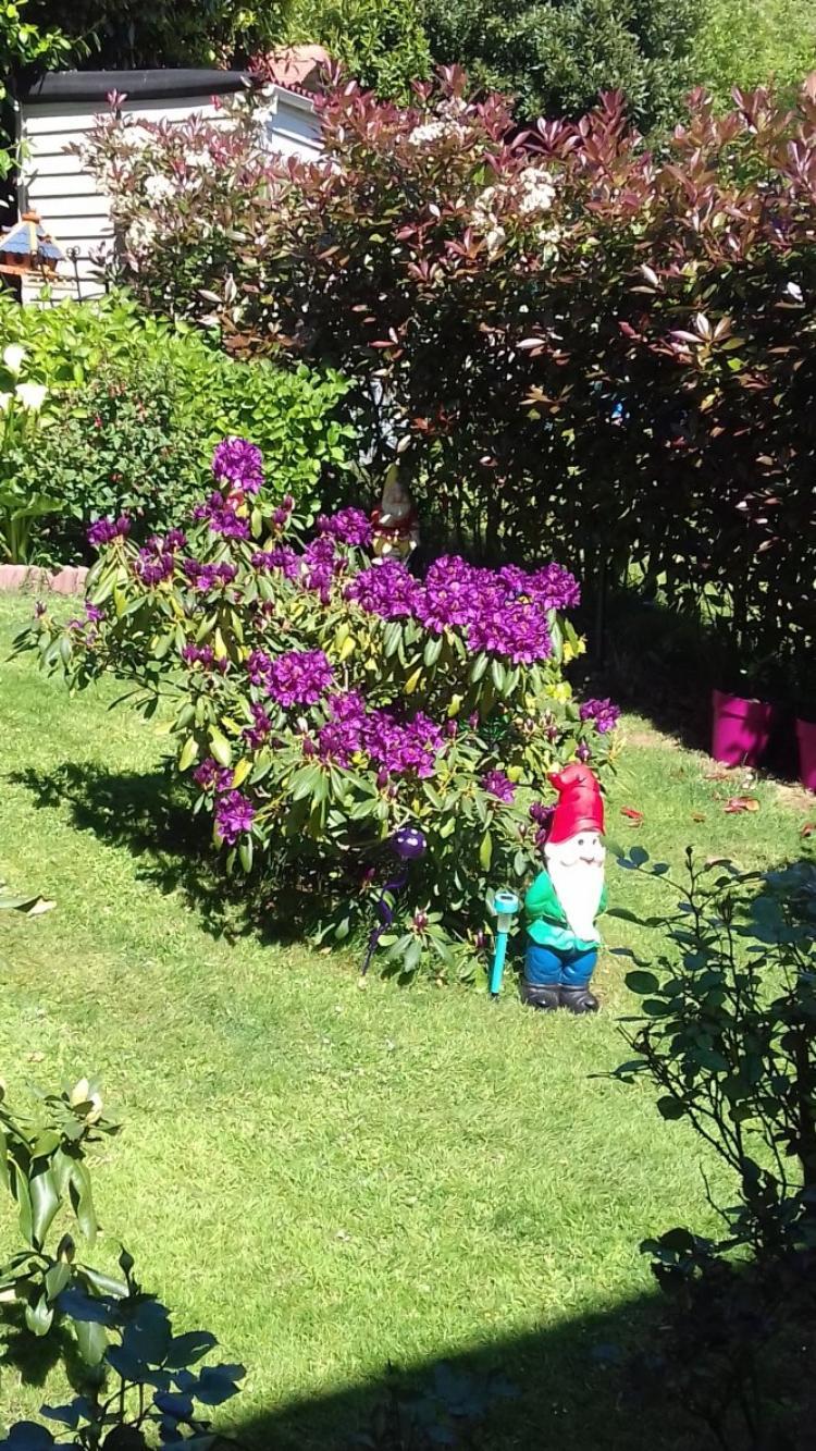 nous venons de terminer notre jardinage