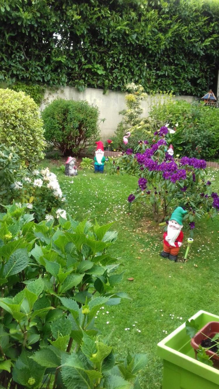 voila termine mon jardin derriere la maison
