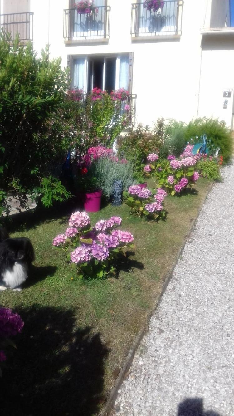 voila jardinage termine ce qui est grave c est quil n y a pas de pluie les plantes souffrent