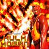 www-them song hulk hogan / hulk hogan  (2008)
