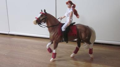 Une nouvelle cavalière et son cheval.
