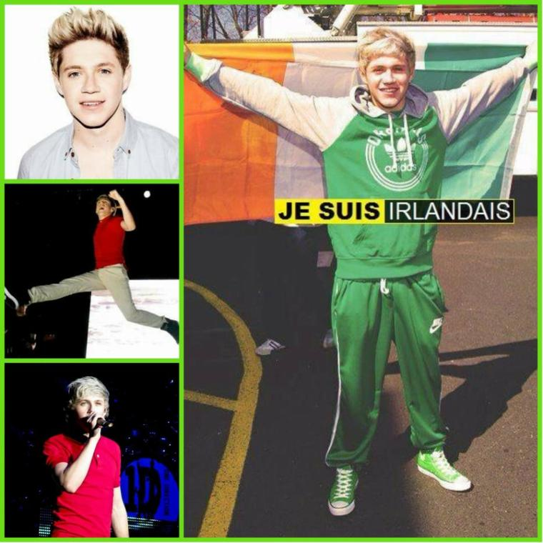 Niall Horan : Montage <3