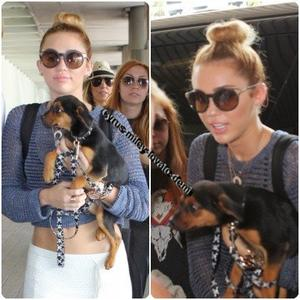 18.05.12 : Miley sort de son hôtel et se rend à l'aéroport , Miami.