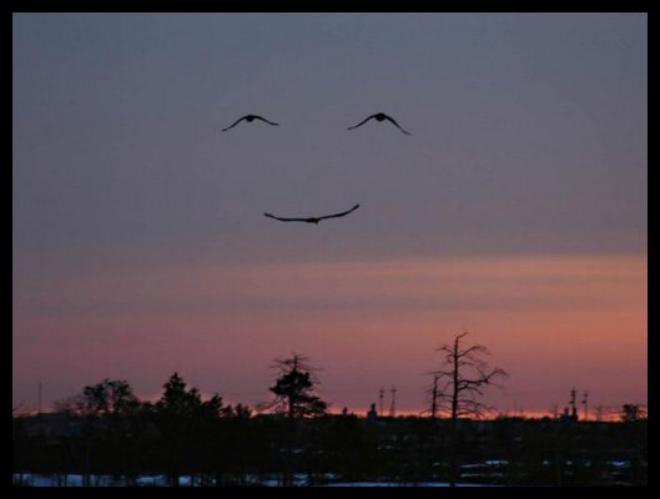 le sourire de dame nature