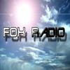 Rc211v : La Radio !