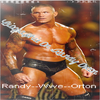 Article 03 Biographie On Randy Orton