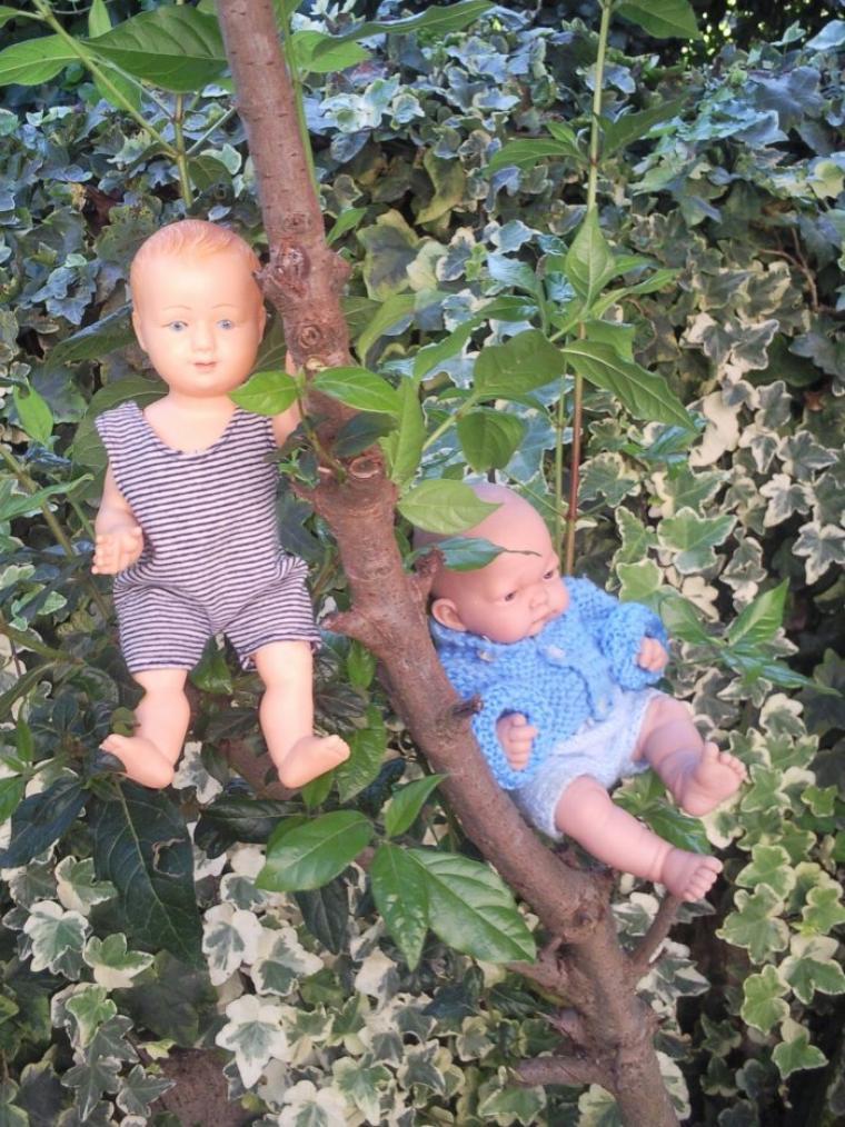 Petitcollin  et Antonio Juan au jardin