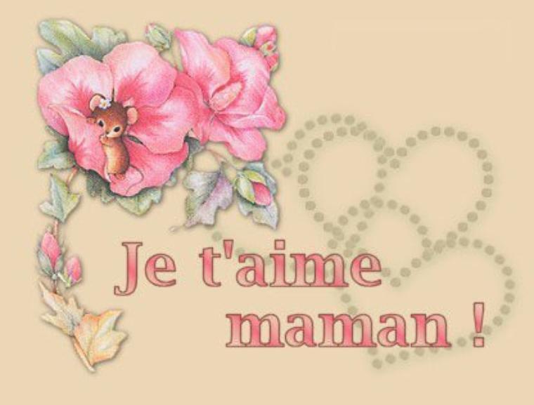 Joyeux anniversaire ma maman cherie blog de mellyn du 33000 - Carte bon anniversaire maman ...