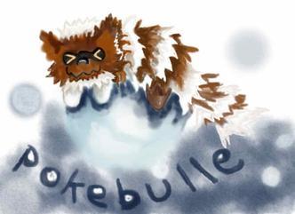 Pokebulle