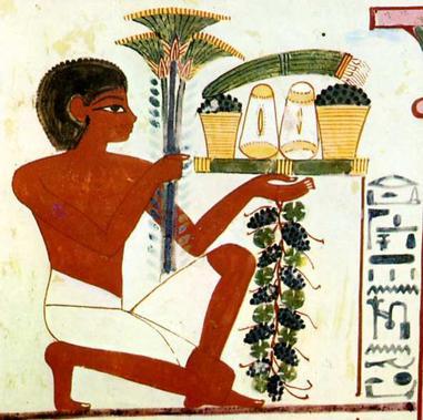 Repas des rois : à quoi ressemblaient les repas des pharaons ?