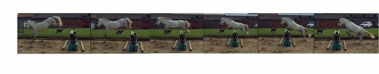 Jump Pony. ♥