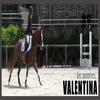 Valentina && Marine ; Mais surt0ut Valentina x0
