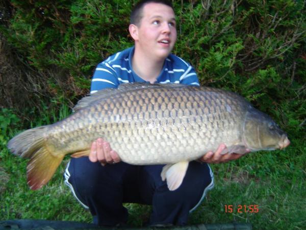 48 h 1 fish