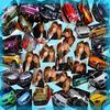* * * Salon de l'auto 2007 * * *