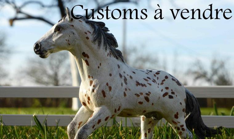 Customs à vendre