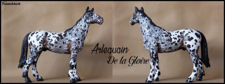 Arlequain