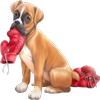 chien boxeur