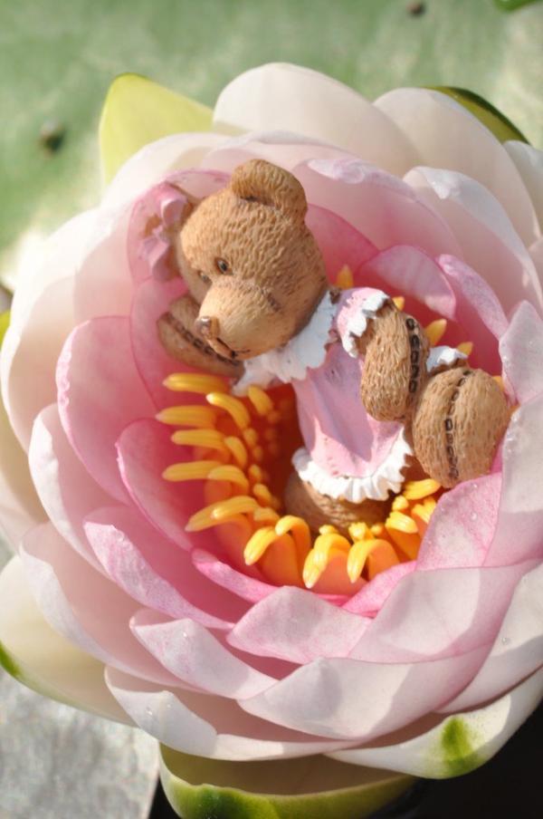 vive le rose :3