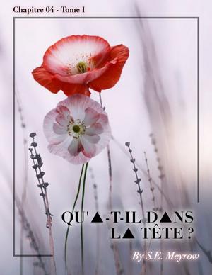 Fiction n°6 - Chapitre 04 - Tome 01 - #NRJMA
