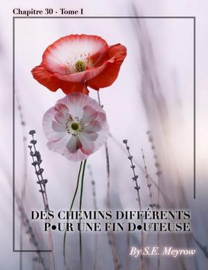 Fiction n°6 - Chapitre 30 - Tome 01 - #NRJMA
