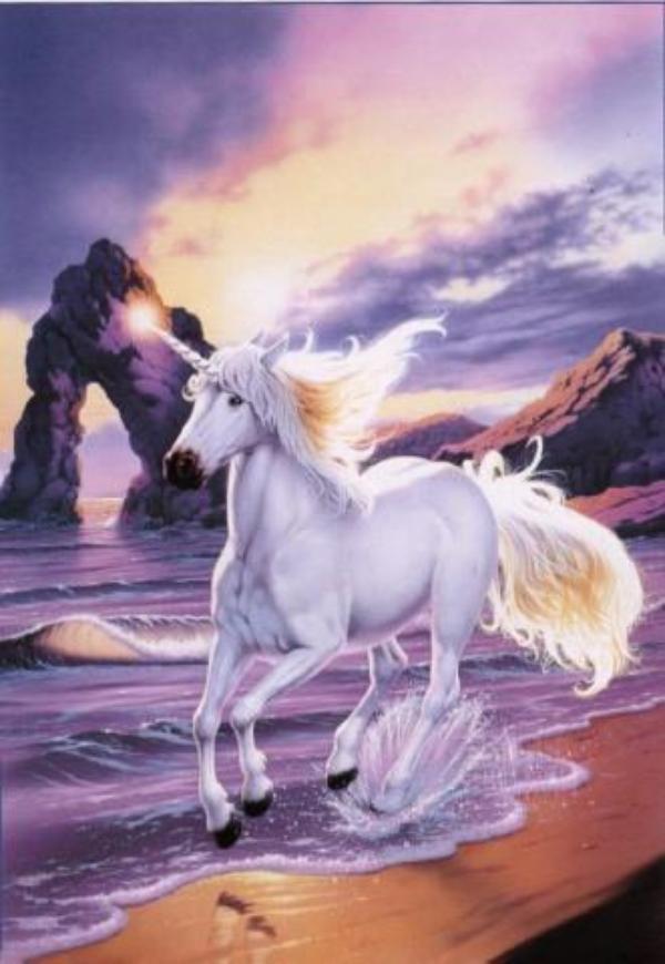 Un Animal Mythique, Fascinant et Pur !