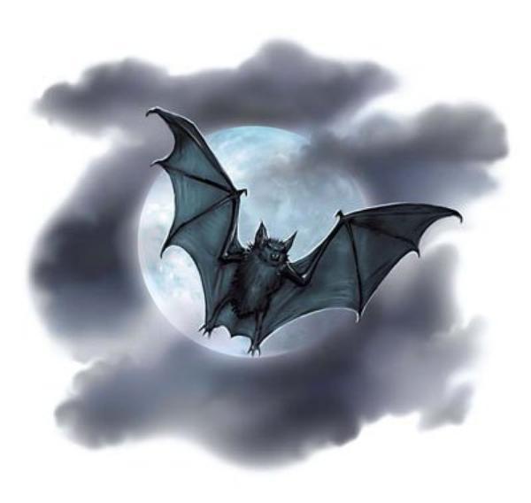 La Nuit du Vampire