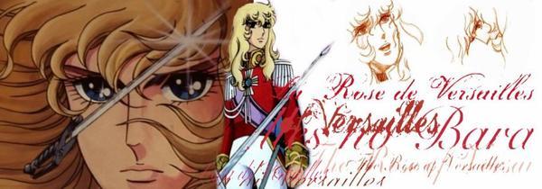 La rose de Versailles.
