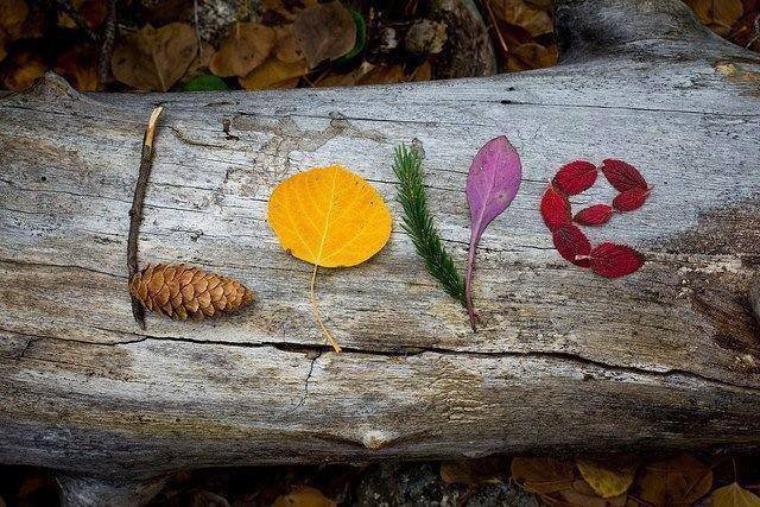 Le meilleur des remèdes est l'Amour naturellement