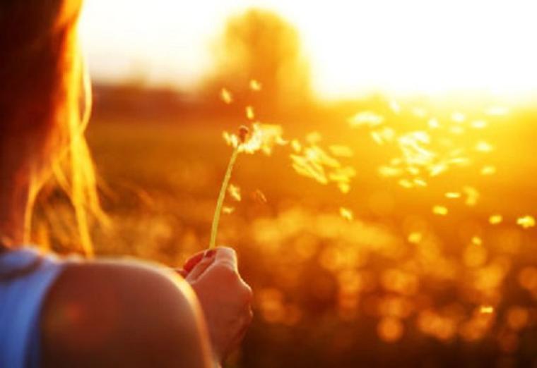 Le Bonheur ne se trouve pas dans le passé, ni dans le futur, mais dans l'instant présent.