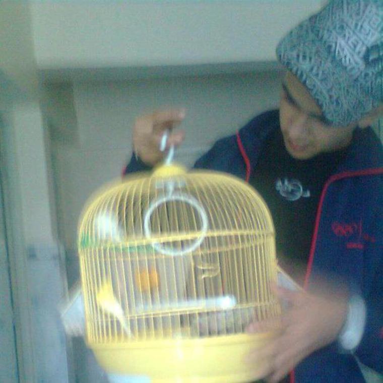 Moi Ac Mes Oiseaux