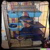 Leur nouvelle cage n°1