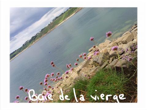 """""""Notre belle Bretagne""""... promenade le long de la Côte de granit rose"""