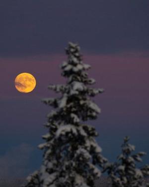 Douce lune scintillante