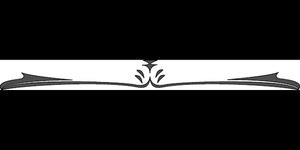 Fiction n°9: Le dressage du dragon de Jessei219